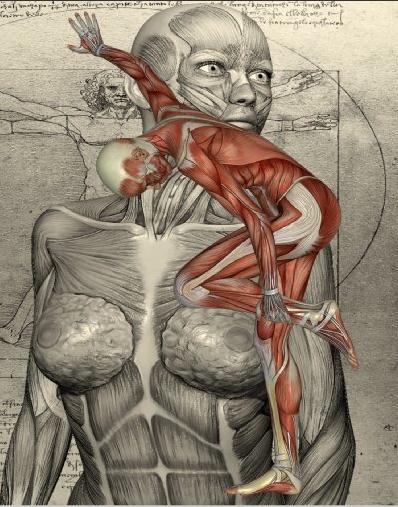 Körper2